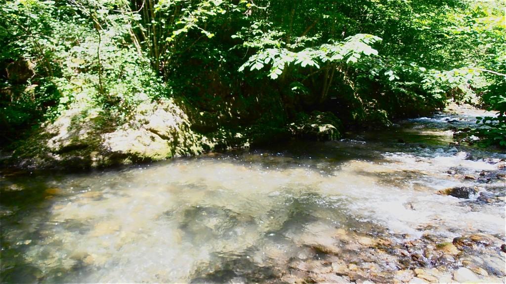 Rivière Le Doron