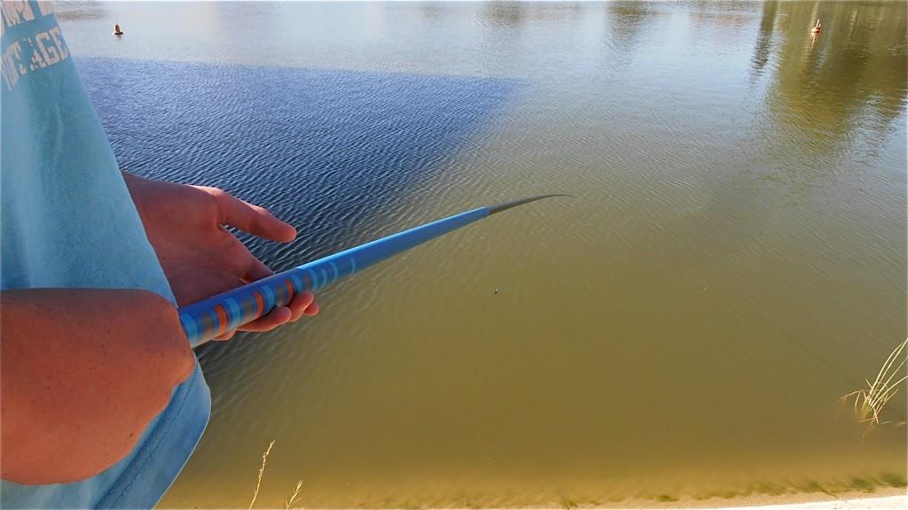 canne pêche décathlon