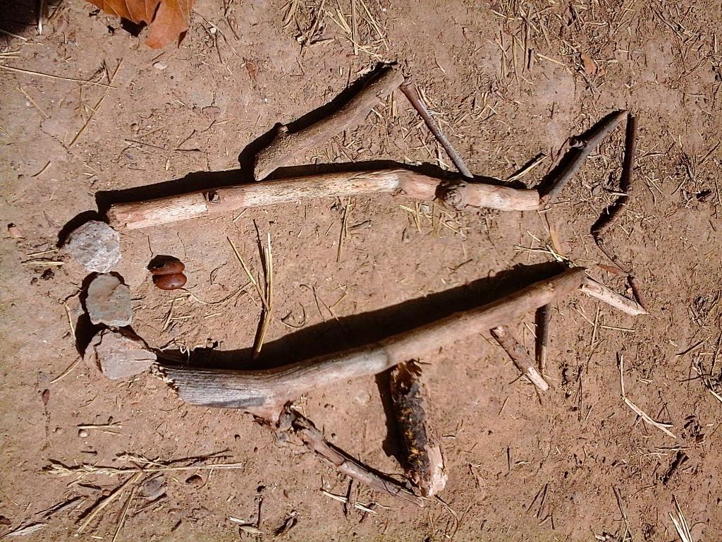 land-art-poisson