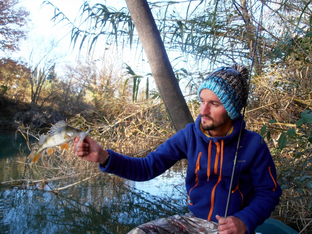 pêche carnassier vidourle