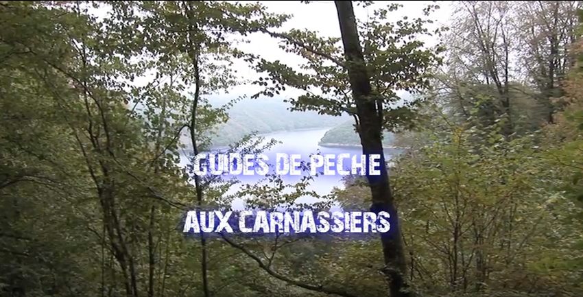guide pêche carnassier hérault