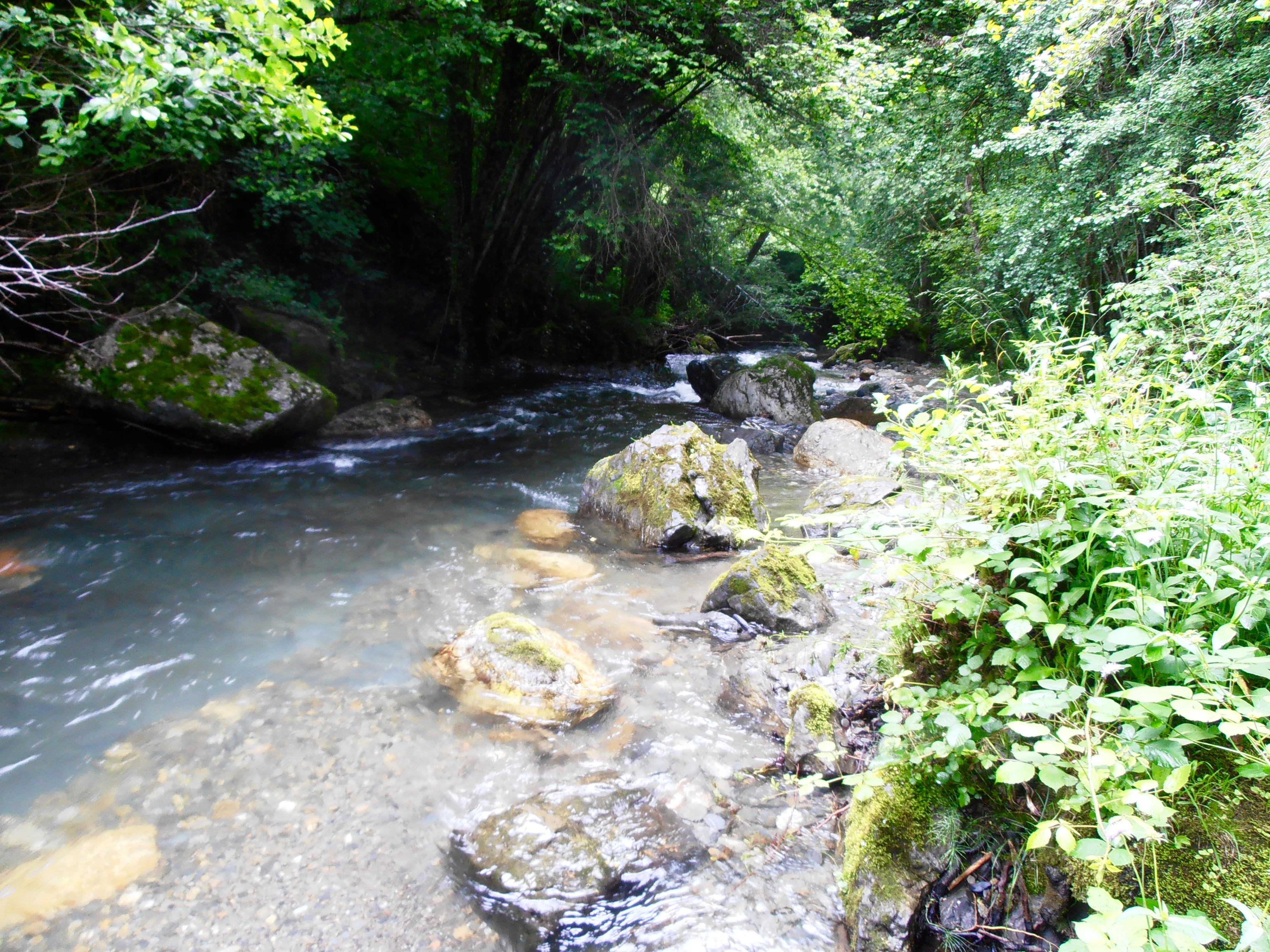 Pêche truite Arièges Pyrénées