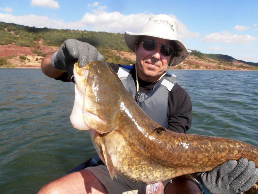 pêche silure lac du Salagou